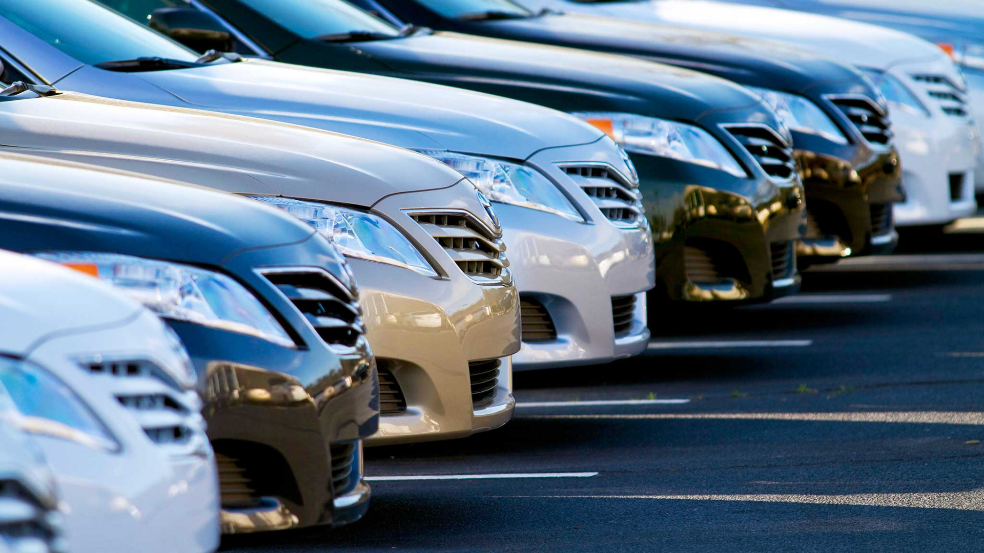 U.S. Car Sales Plummeted in September: Single Outcome for Dual Stock Action